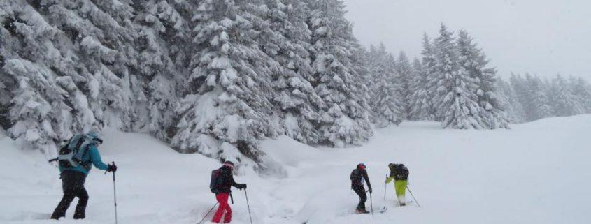 Skitourgeher im Schnee