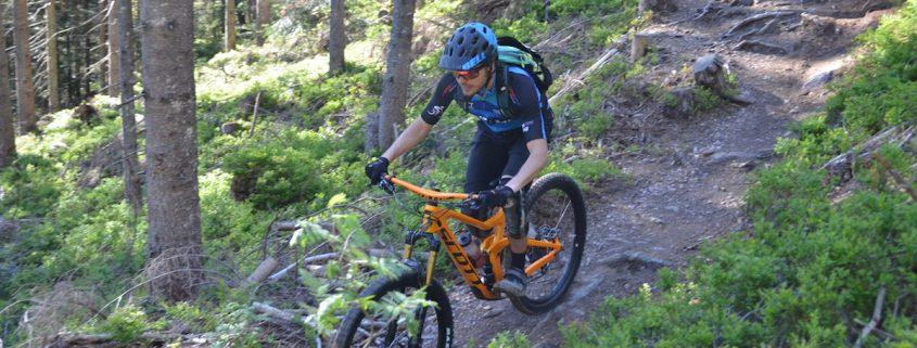 Mountainbiker auf Waldweg
